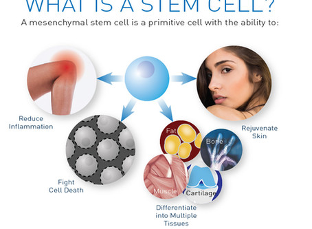 Look and Feel Younger with Regenerative Stem Cell Therapies for the Face & Body