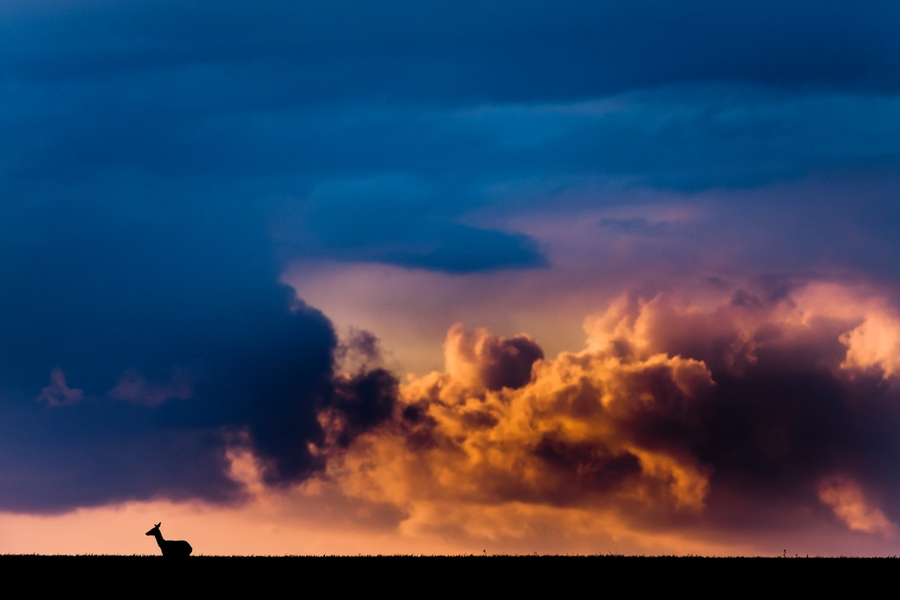 la tête dans les nuages