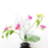 Ikebana (45).png