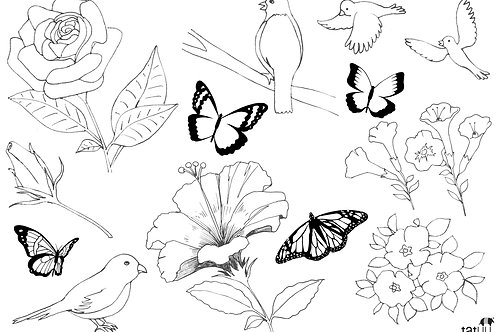 Flores, pássaros e borboletas