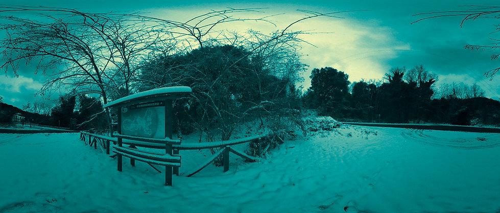 p5_snow2new_1700.jpg