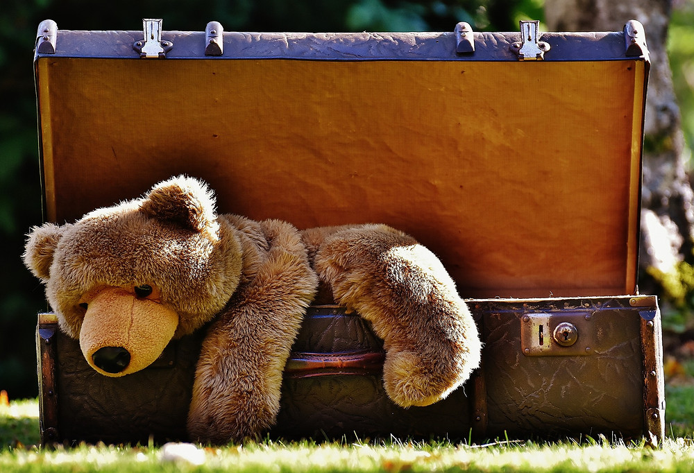 Teddy Bear Party Day