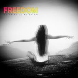 DibeKillaSound - Freedom