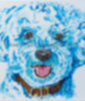 Pet portrait painting of Bac a Bichon Friese puppy using shades of blue and aqua