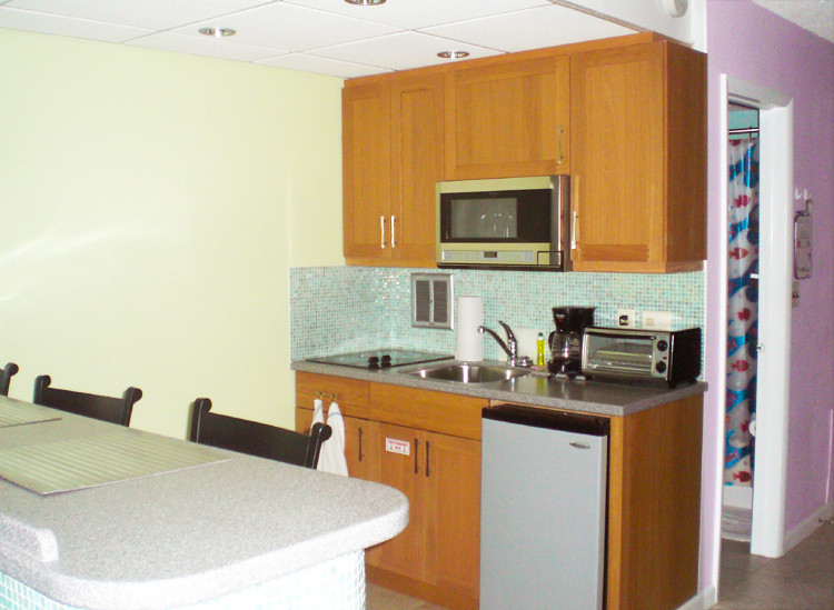 Kitchen with microwave, two burner stove, under counter refrigerator, and toaster oven.