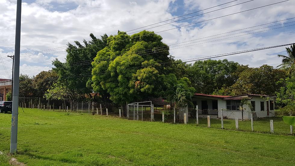 Terreno Comercial sobre la Panamericana sector de Coronado