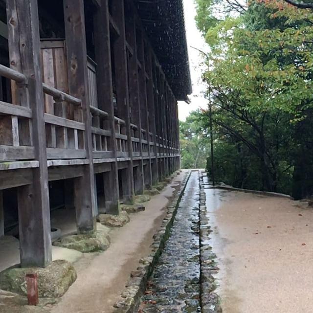 Rainy day at Miyajima
