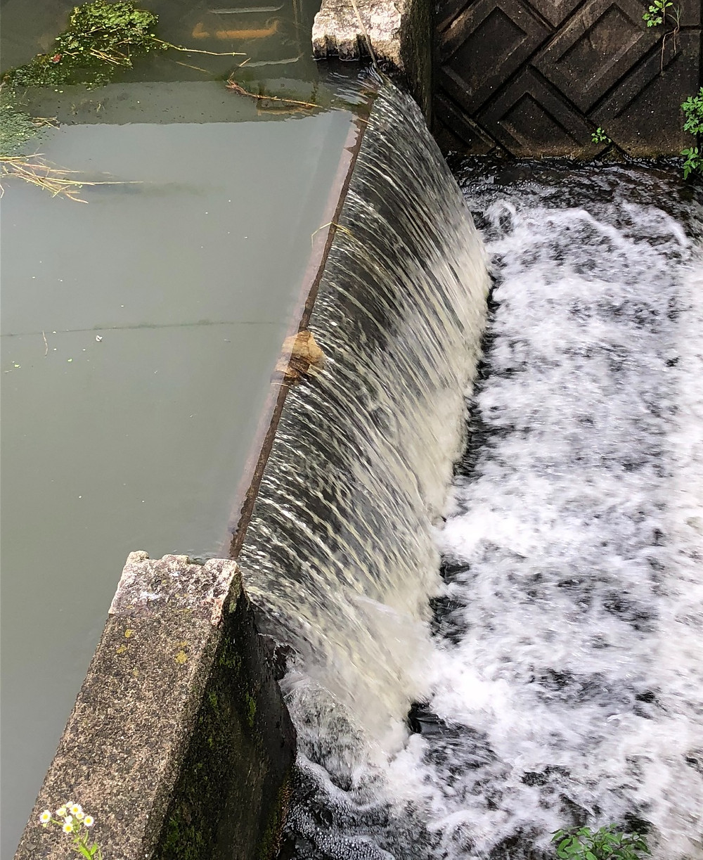 Water in the river after a rain