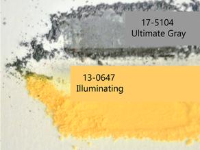 Pantone Color 2021