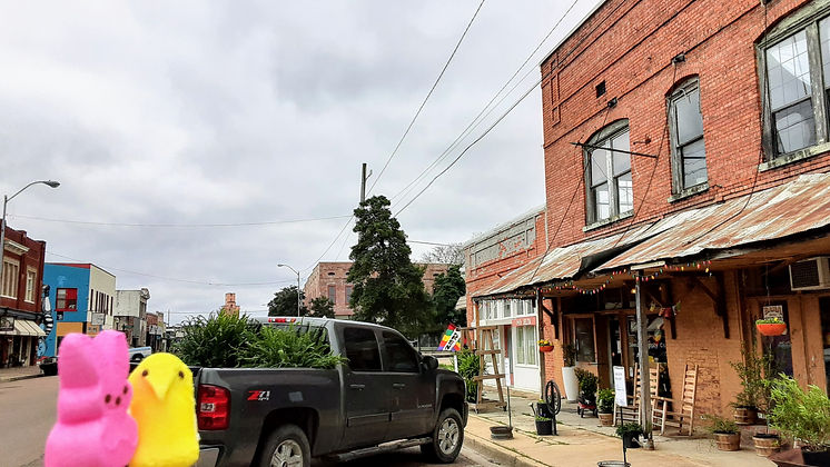 Collective Seed & Supply | Garden, Gifts & General Store | Peep Tour of Clarksdale, Mississippi (c Shared Experiences USA)