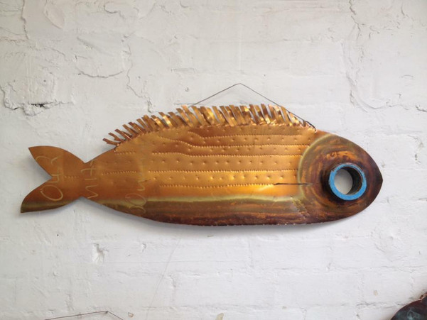 blue eye fish nicki shipp_n.jpg