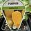 Thumbnail: Pumpkin Butternut 9cm