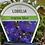 Thumbnail: Lobelia Marine Blue 6 cell K