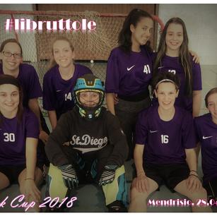 Pink Cup SUM-AUHT 2018 - #libruttole.png