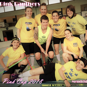 Pink Cup SUM-AUHT 2018 - Pink Panthers.p