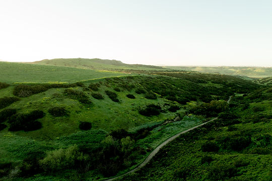 Bella Sitia Otay Ranch Landscape