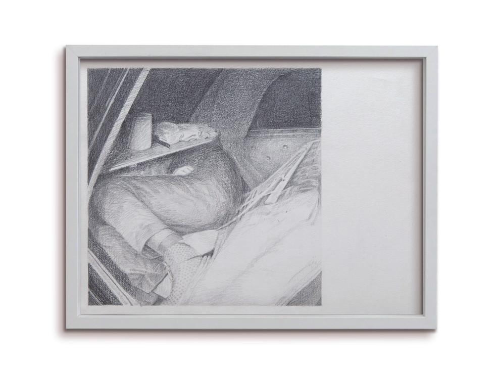 trunk6.jpg