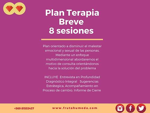 Terapia Online 8 sesiones