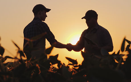 Two%20farmers%20talk%20on%20the%20field%2C%20then%20shake%20hands_edited.jpg