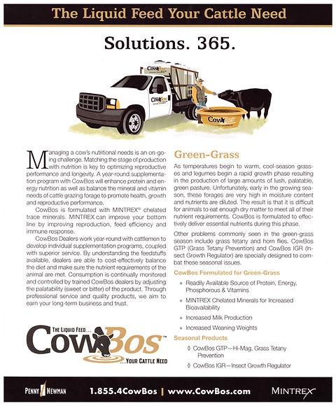 COWBOS (4) - Copy.jpeg