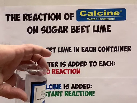 The Reaction of Cacline