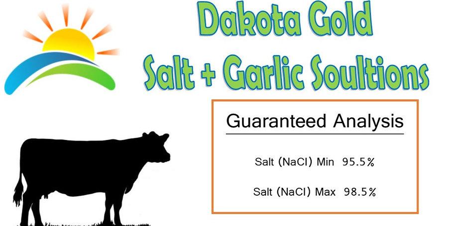 Dakota_GOLD_edited_edited.jpg