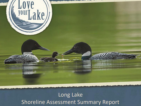Shoreline Assessment Summary Report