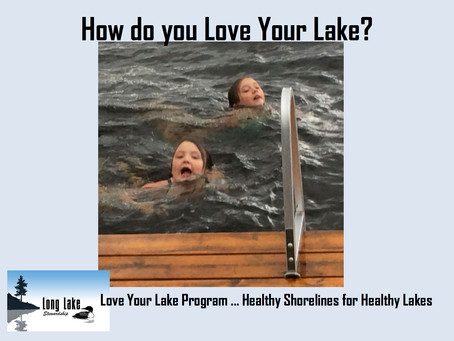 How do you love your lake?