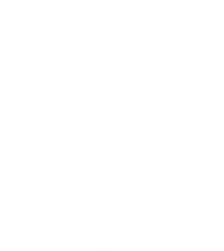 little wolf and moon