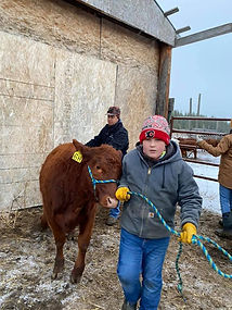Beef Weigh-In 2.jpg