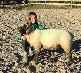 Violet Murdoch Sheep.jpg