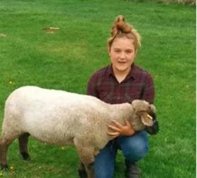 Lexi Bishop Sheep.jpg