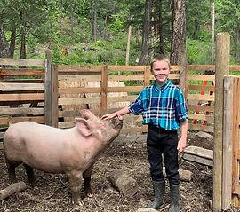Ronan O Pig.jpg