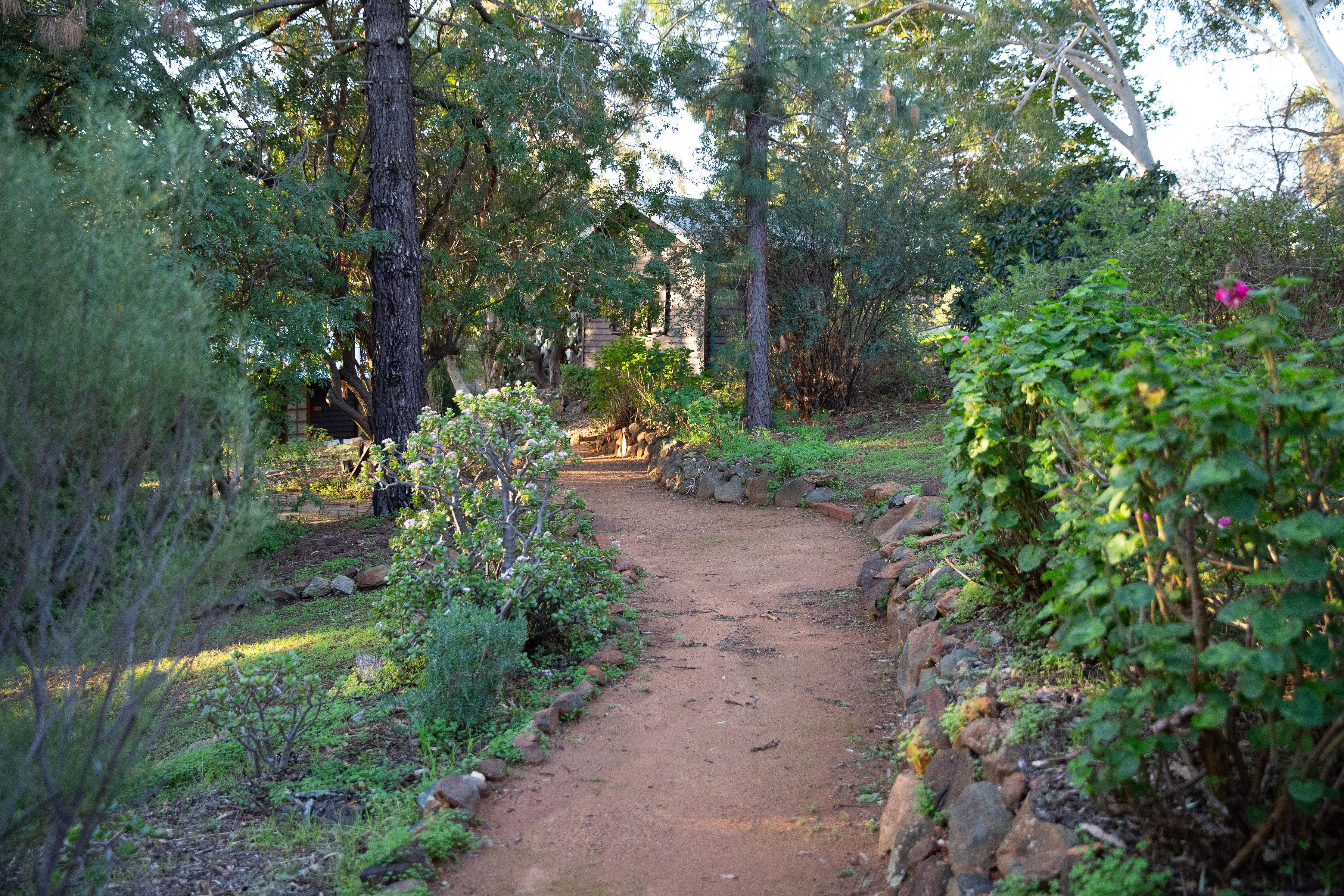 Winding path to writing