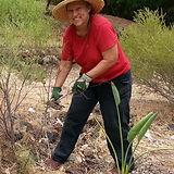 Fern_Pendragon_KSP Gardener.jpg