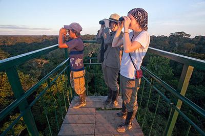 Canopy Tower at an Amazon Eco Lodge near Puerto Maldonado