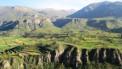 Colca Canyon Tour from Arequipa links this natural site with the 2nd largest city of Peru