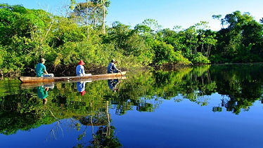 Fishing in Peru is a perfect jungle tour in Iquitos