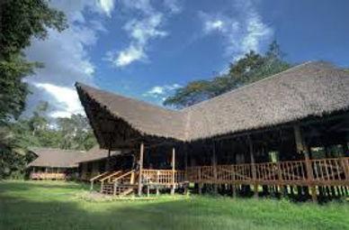 Tambopata Eco Lodge at the Tambopata Research Center