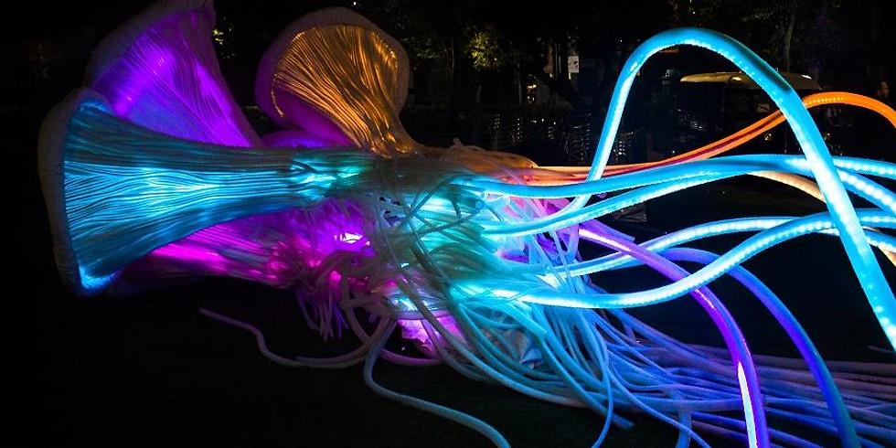 Leeds' Lights Festival