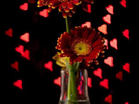 Valentine's Night practical evening - Bokeh