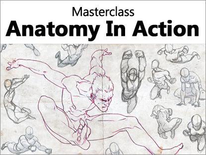 Masterclass_Anatomy_In_Action.jpg