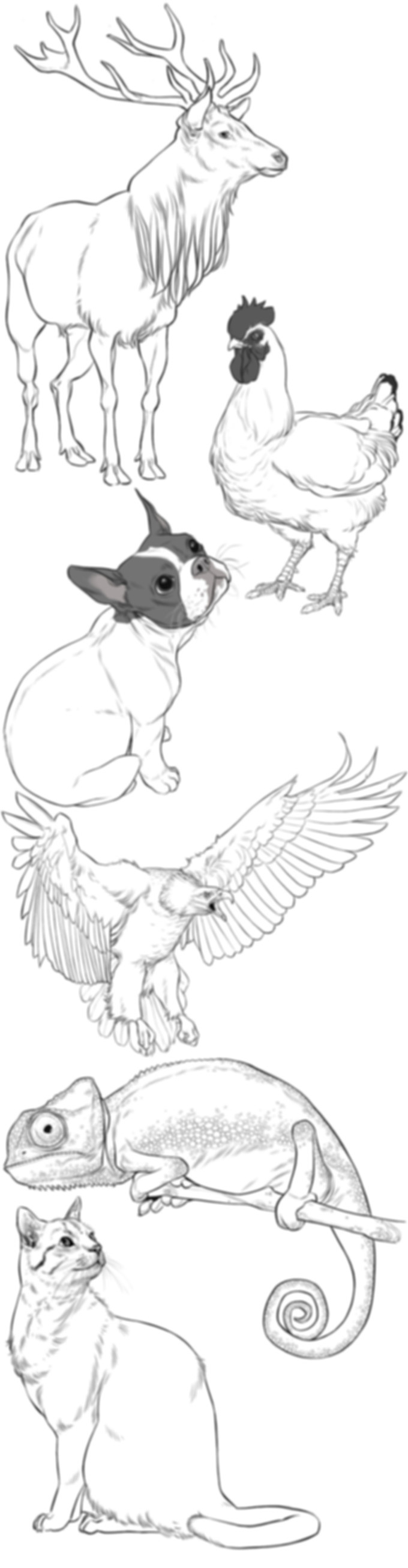 realistic-animals.jpg