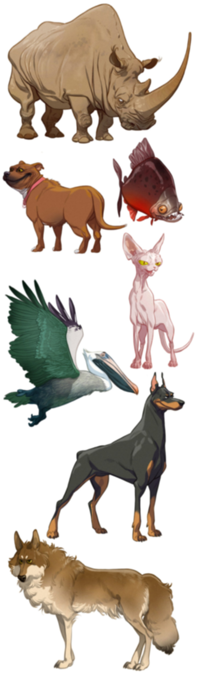 masters_of_anatomy_cartoon_animals_all_f