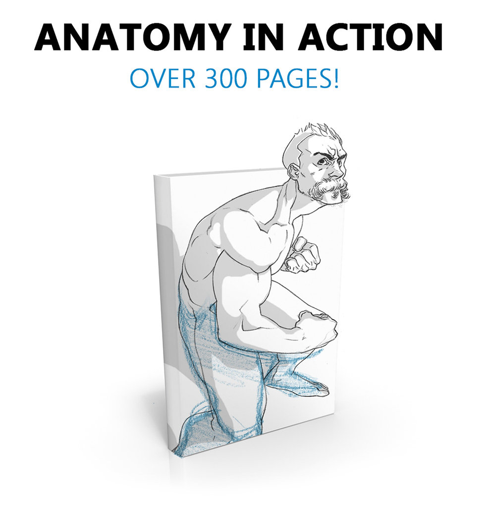 Anatomy_In_Action_page_4_wix.jpg