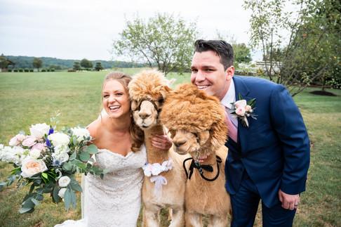 MEGAN & STEVE WEDDING-553.jpg