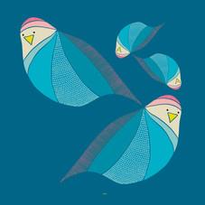 cuadrado-paloma2.jpg