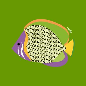 peces45x45.jpg