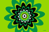 individual-flores-verdes.jpg