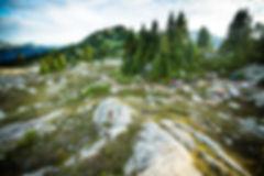 Whistler Alpine mtb trail